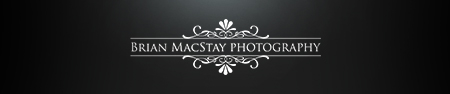Premier San Francisco & Napa Wedding Photographer logo